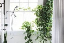 Bathroom Window Treatments / For a style boost, window treatments for the bathroom can have a big impact. Privacy and function are equally important browse our pins for solutions to both!