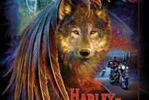 harley  bikes / by carol ladouceur