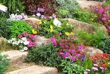 σκάλες και μονοπάτια