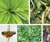Cosmétiques Naturels / Découvrez les bienfaits d'ingrédients millénaires dans une sélection exclusive de produits cosmétiques dénichés tout spécialement pour vous.