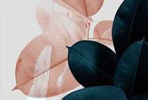 • colours, patterns & textures •