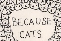 CATS / Cats cats cats cats cats cats cats cats cats cats cats cats cats cats cats cats cats cats cats cats cats cats cats cats cats cats cats cats cats cats cats. / by Erin