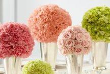 Wedding Flower Inspiration / Flower ideas for any wedding!