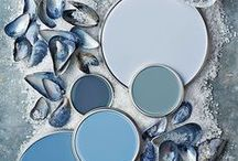 Coastal Color Palettes / Get inspired with a variety of coastal color palettes for beach homes!