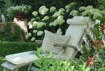 Garden Ideas - Dreamgarden / Beautiful & Wild & Green; Garden trends