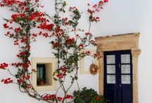 Exterior Spaces / Gorgeous gardens and exteriors of houses, villas and apartment buildings