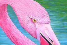 Bird is the word / by Eleanor Rawinia Tuhi