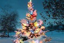Weeeee! Christmas! / by Aimee Adams Nolan