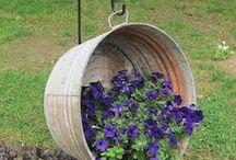 Garden / Giardini e giardinaggio