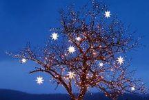 Christmas - Outside / by June Saner Rueger