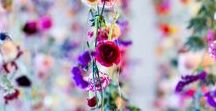 Flowers / The most beautiful flowers on Pinterest. They offer me a great deal of inspiration, my favourites are roses and peonies.