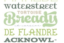 Fonts / by Christina Connolly