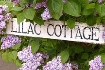 Country Cottage / Everyone can identify with a fragrant garden, with beauty of sunset, with the quiet of nature, with a warm and cozy cottage. Thomas Kincade
