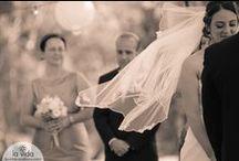 La Vida: Weddings