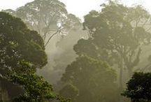 Sustainable, Eco & Agri Tourism