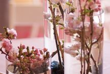 The Cherry Blossom Wedding / Cherry blossoms always make me stop and stare. They are so elegant and beautiful, a chic wedding motif.