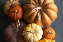 The Most Wonderful Time of the Year! / by Heather Braman Gaton