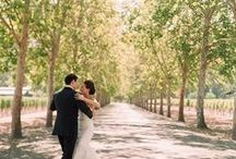 Beaulieu Gardens / One of our favorite sites to work in...