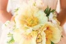 Bouquets / From soft and romantic to modern and bold, we love creating the prefect bouquet for our brides...