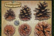All Things Pinecone / by PineConeLady Crafts