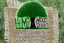 Hemp - The Super Plant! / by PineConeLady Crafts