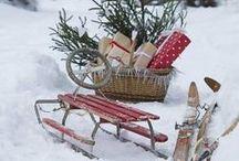 Garden Hoilday / Seasonal ideas to try this holiday season