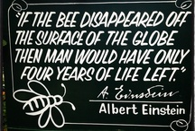 Bee's & Bee products
