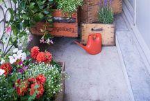 Outside & Gardening