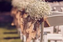 Wedding / Rustic, elegant, gold, white, burlap, lace & touches of Fall colors. / by Amelia Williams