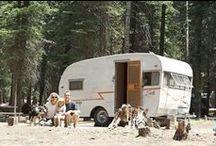 Seasonal: Camping / by Stephanie Craig