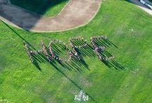 September 2013 / by The Enterprise of Brockton