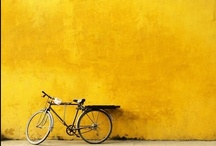Colour - Yellow / Everything Yellow!