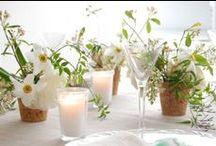 FLORAL + GARDEN / blooms | floral | fauna | bouquets | gardens