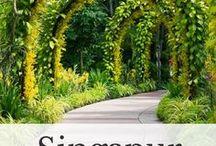 Singapur Reisen / Singapur Urlaub, Singapur Reise, Singapur Tipps, Singapur erleben, Singapur Ideen