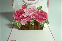 Card Creations / by Missy Sinks
