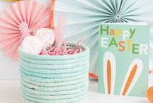Spring Crafts / Spring is in the air! Check out these floral, Easter, and decorating crafts to welcome the warmer weather!