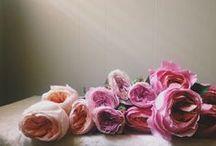 Flowery paradise