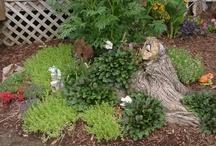 Gardening / by Pam Ferguson McCloud