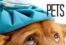 Natural Remedies For Pets / All about natural health for our little -or not- friends.
