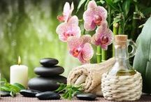 Aromatherapy & Essential Oils / Add aromatherapy & essential oils in your everyday life and enjoy the plant benefits for healing and relaxation.
