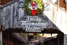 Gatlinburg Seasons & Holidays / Gatlinburg and the Smoky Mountains are beautiful throughout the whole year! From fall leaves in the mountains to winter decorations all over the Gatlinburg strip - You'll love your visit!