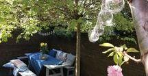 Aroma Home & Garden