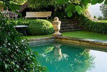 HOUSE: Pool & Patio / by Amanda Dominy