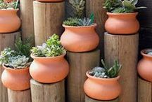 Gardening - Container & Vertical / by Amanda Dominy