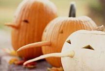 Halloween  / by Jessica Jarvi-Bergman