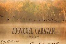 wohnwagen / Mit dem Wohnwagen reisen - einfach bei uns anmieten. www zugvogel-caravan.de