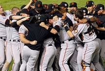 Giants and all things Baseball! / by Jaclyn Gilbert