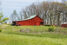 Barn/garage ideas / Rehab old garage to look more like a barn / by Lisa