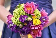 Wedding / by Dawn Walters