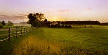 East Lynn Farm / A historic working farm in Northern Virginia where more than 140 acres of land meets more than 140 years of history. At East Lynn Farm we host rustic, eco-chic countryside weddings as well as romantic getaways at our historic farmhouse inn.